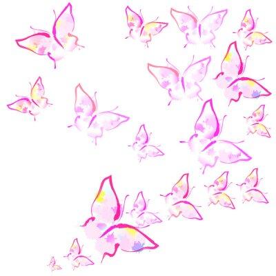 Фотообои красивые розовые бабочки, изолированные на белом