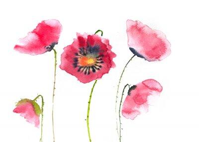 Фотообои Красивые красные цветы мака, акварель