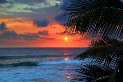 Фотообои beautiful sea sunset and palm leaves