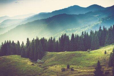 Фотообои Красивый летний горный пейзаж.