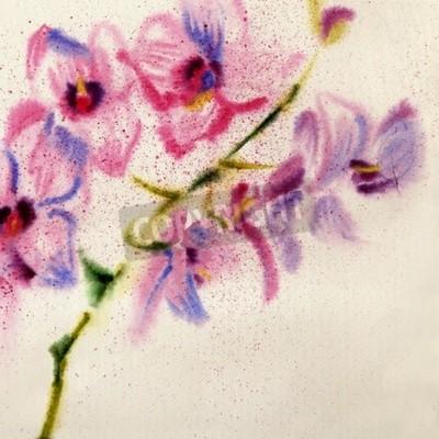Фотообои Красивая акварельная орхидея