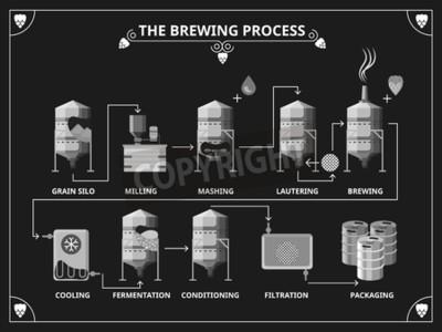 Фотообои Пиво процесс пивоварения. Вектор производства пива инфографики набор. Заказать затирания lautering иллюстрации продукта