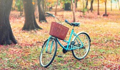 Фотообои Велосипед для туристов. (Фокус в корзине) в винтажном ретро тон