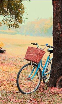 Фотообои Велосипед для туристов. (Фокус в корзине) Урожай ретро тон