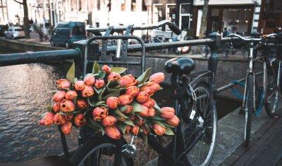 Фотообои Велосипед с тюльпанами
