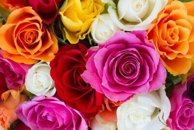 Фотообои bouquet of fresh roses