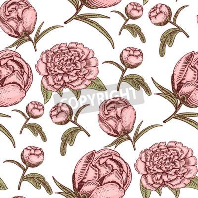 Фотообои Bouquet vintage hand drawn style flowers bud wedding bloom elegant birthday nature design romantic flora blossom seamless pattern background vector illustration.