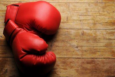 Фотообои Боксерские перчатки ¿En-Серио?