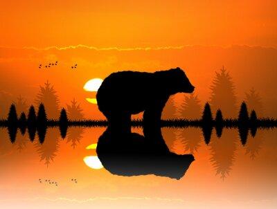 Фотообои коричневый в лесу на закате