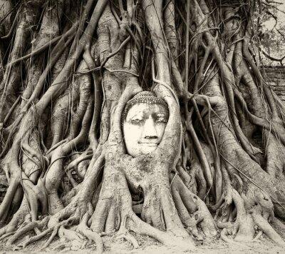 Фотообои Голова Будды в корнях дерева в Wat Mahathat, Аюттхая, Таиланд