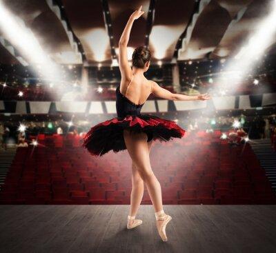 Фотообои Классическая танцовщица в театре