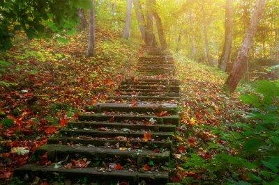 Фотообои Поднимитесь по лестнице к солнцу