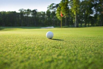 Фотообои Крупным планом мяч для гольфа на зеленый