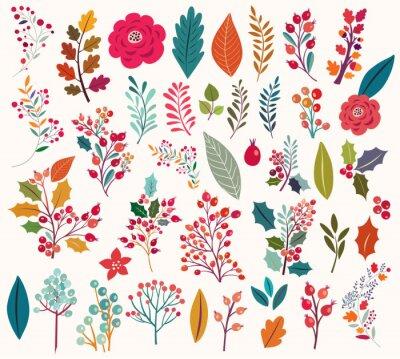 Фотообои Коллекция цветов и листьев