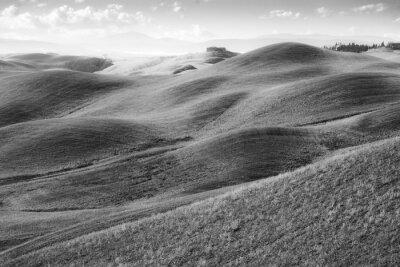 Фотообои Колли Тоскани