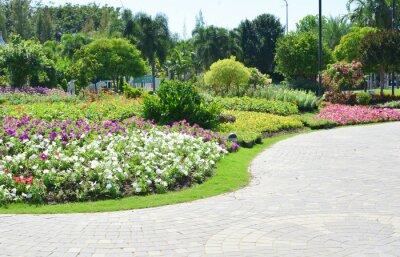 Фотообои Красочные цветы в саду