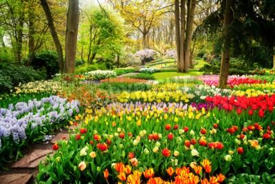 Фотообои Красочные тюльпаны Цветочные клумбы и путь в весенний формальный сад, ретро тонированные