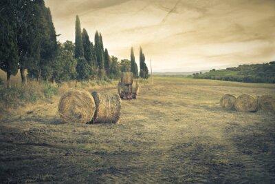 Фотообои сельская местность
