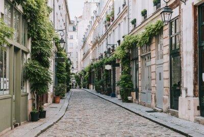 Фотообои Cozy street in Paris, France