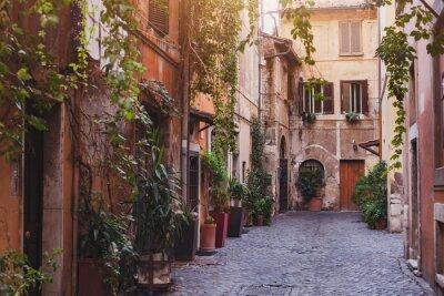 Фотообои уютная улица в Риме, Италия