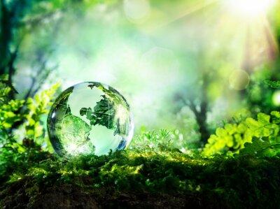 Фотообои хрустальный глобус на мох в лесу - окружающая среда Концепция