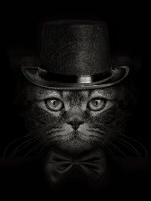 Фотообои темная морда кошки крупным планом в шляпе и галстук бабочка