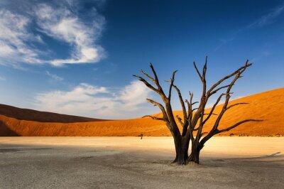 Фотообои Мертвое дерево в Sossusvlei, в пустыне Намиб, Намибия