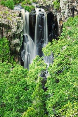 Фотообои Denham водопад в Beechmont, Квинсленд, Австралия. Расположенный в Denham заповеднике.