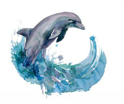 Фотообои дельфин