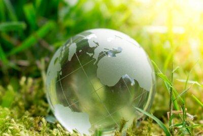 Фотообои День Земли