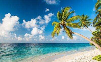 Фотообои Одинокий пляж на Мальдивах