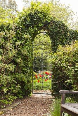 Фотообои Eisernes Gartentor в Buchsbaumhecke