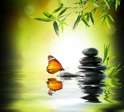 Фотообои Эксклюзивный деликатный концепция - бабочка на воде в саду
