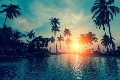 Фотообои Фантастический закат, пальмы в тропический пляж.