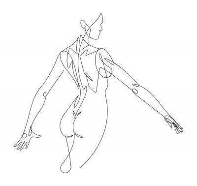 Фотообои Женская фигура непрерывной линии векторная графика VI