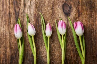 Фотообои пять розовых тюльпанов на деревянных фоне