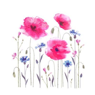 Фотообои Цветочные поляны с маками и васильками.