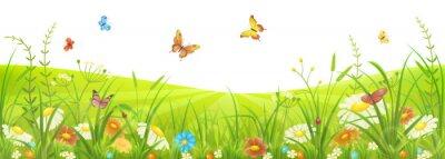 Фотообои Цветочный летний или весенний луг с зеленой травой, цветами и бабочками