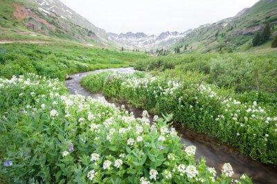 Фотообои цветы и горный