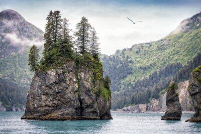Фотообои Туманный день, Кенай фьорды Национальный парк, Аляска, США