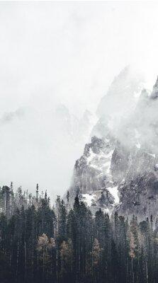 Фотообои туманный пейзаж в tatry