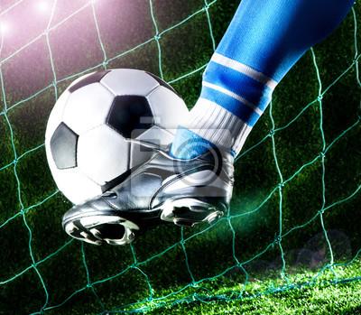 Спорт и рекреация