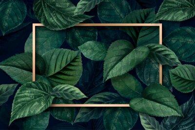Фотообои Forest leaf frame
