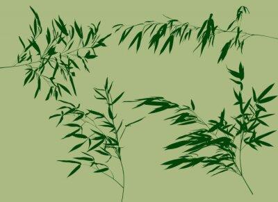 Фотообои четыре зеленых бамбуковые ветви установить иллюстрации