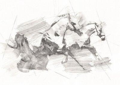 Фотообои freehand horse head pencil drawing