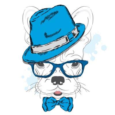 Фотообои Французский вектор Бульдог. Мультфильм щенка. Собака в шляпе и солнцезащитных очков. Милый щенок. Хипстер. Мальчик. Родословная собаки.