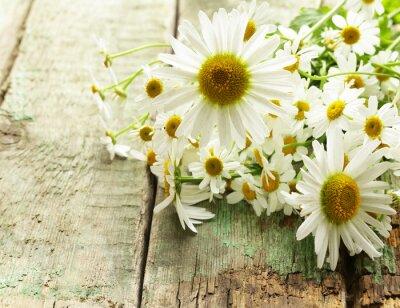 Фотообои Свежие цветки ромашки букет на деревянном фоне