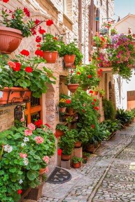 Фотообои Полный цветок крыльца в маленьком городке в Италии, Умбрия