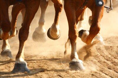 Фотообои Скачущей лошади Копыта