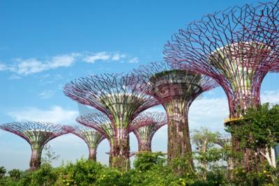 Фотообои Сады у залива, Сингапура